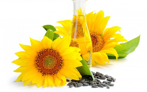 sunflower-oil-and-health
